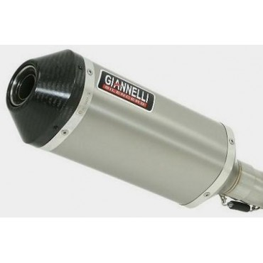 Giannelli Silencers BMW F 700 GS