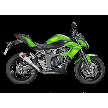 Akrapovic Kawasaki Ninja Zx 250 SL S-K2SO8-CUBT